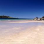 Beachcombed 2