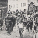 An Elephant Invades Italy in 1936