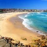Beachcombed 4