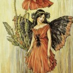 The Problem of Pygmy Fairies