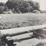 Cellini's Canon