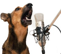how to teach dog to speak on command