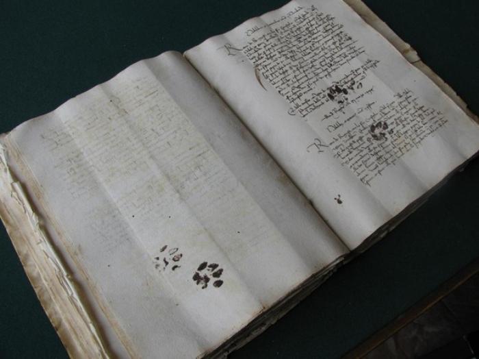 inky cat on manuscript