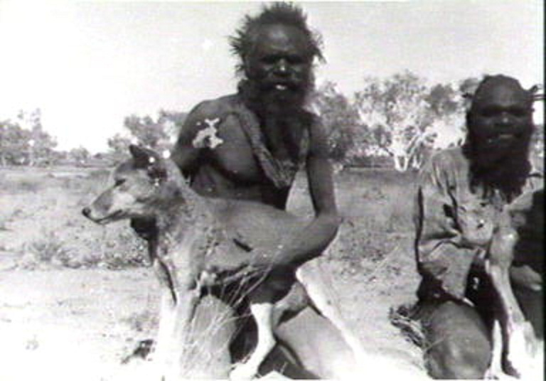 aborigine and dingo