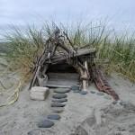 Beachcombed 41