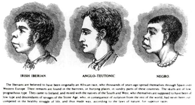 irish african