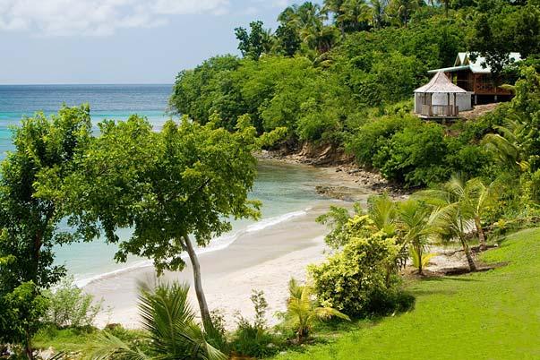 beach garden