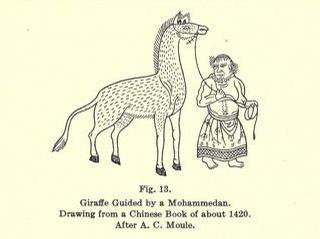 15 cent giraffe