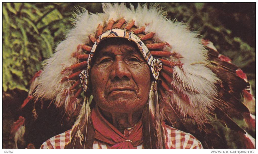 The Cherokees' Mediterranean Origins!? - Beachcombing's Bizarre ...