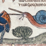 Daily History Picture: Snail Fighting