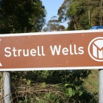 Struell Wells, Ireland: Pagan Customs in the Modern Age?