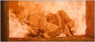burning banknotes fairies