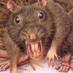 Beachcombing and the Telepathic Rat