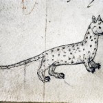 Hating Medieval Cats #4: Waldensian Cats