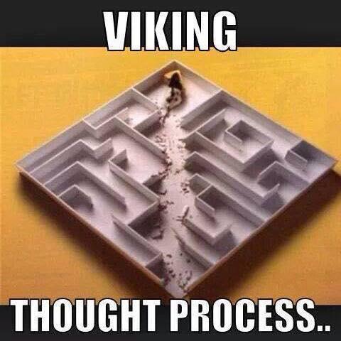 Viking thought process