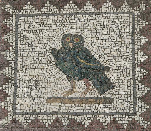 roman owl spain