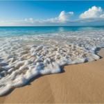 Beachcombed 69