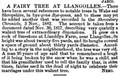 A fairy tree at Llangollen p 124 vol. 7 Bye-Gones