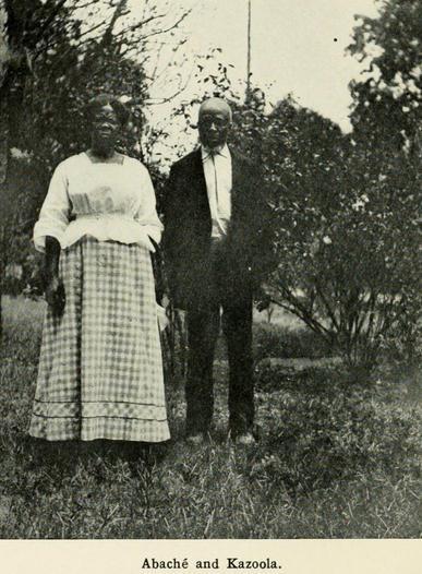 abaché and Kazoola