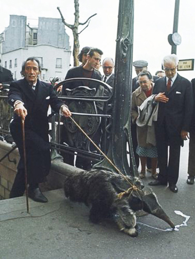 salvador dali and pet ant eater