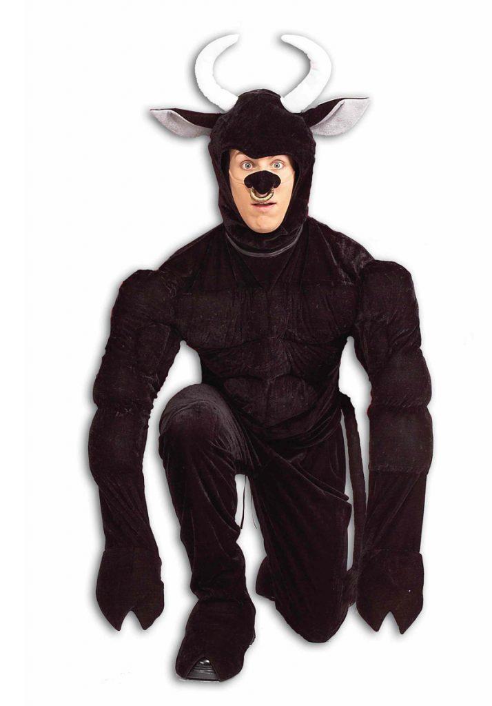bull fancy dress