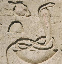 egyptian snake