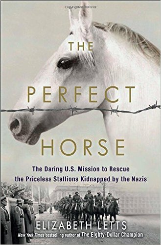 New History Books: The Perfect Horse