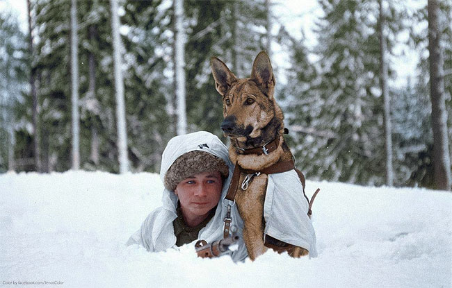Daily History Picture: Young Finnish Soldier and Dog