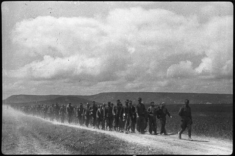 Daily History Picture: Germans Captured in Crimea