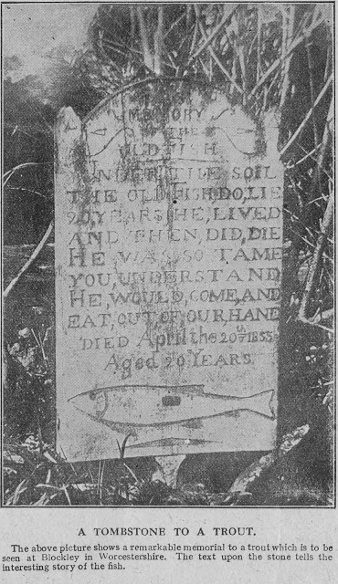 Daily History Picture: Tombstone for a Trout