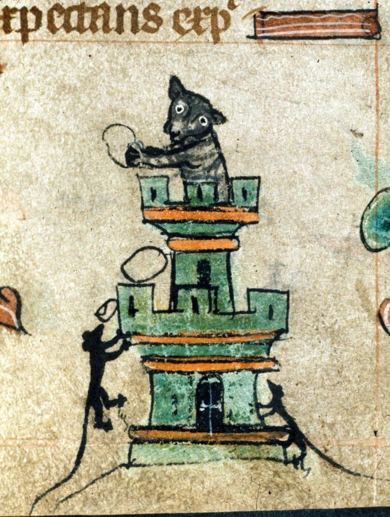 Daily History Picture: Cat in Castle