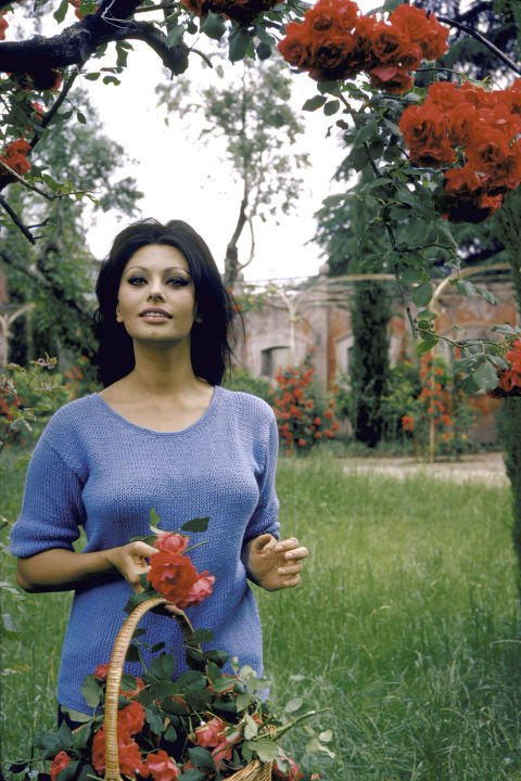 Daily History Picture: Sophia in the Garden